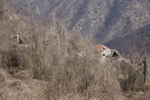 14D03 Liguria Brandolini
