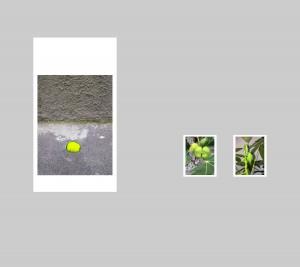 008-Parete 1
